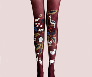 aesthetic, fashion tights, and tights image