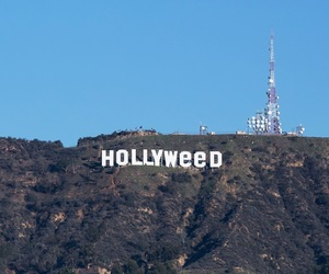 hollywood, weed, and hollyweed image