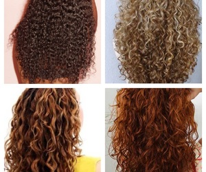 colours, curls, and curly image