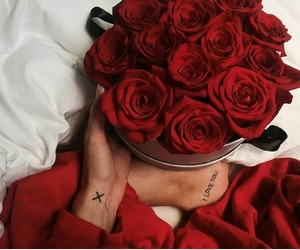 classy, flowers, and roses image