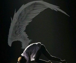 jin, v, and wings image