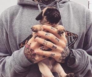 tattoo, animal, and boy image