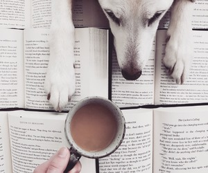 books, dog, and pet image