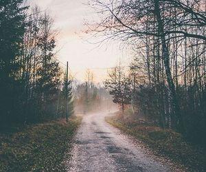 autumn, camino, and explore image