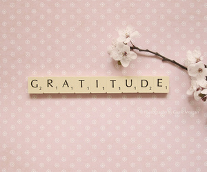 gratitude and cute image