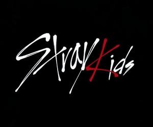 kpop and stray kids image