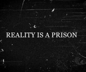 reality, prison, and quotes image