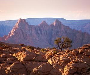 arizona, beautiful, and love this image