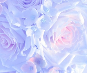 beauty, pastel, and purple image
