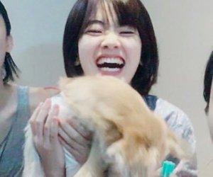 dog, girl, and korean image