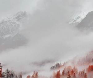 fall, wallpaper, and winter image