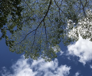 blue, look, and sky image