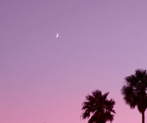 pink, wallpaper, and purple image