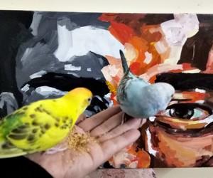 art, arte, and love birds image