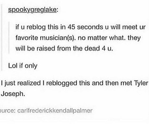 5 seconds of summer, michael clifford, and ashton irwin image
