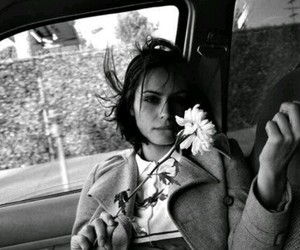 black & white, flower, and car image