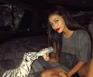cindy kimberly, wolfiecindy, and animal image