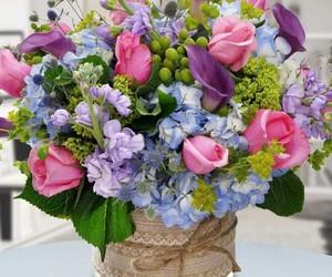 bucket, flower, and violet image