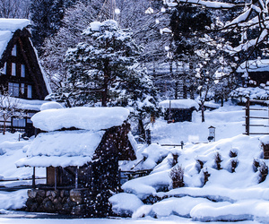 cold, inspiration, and japan image
