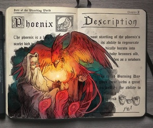 harry potter, art, and phoenix image