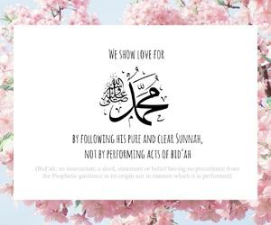 blossom, innovation, and islam image