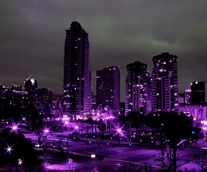 purple, city, and light image
