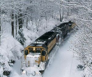 holidays, nature, and snow image