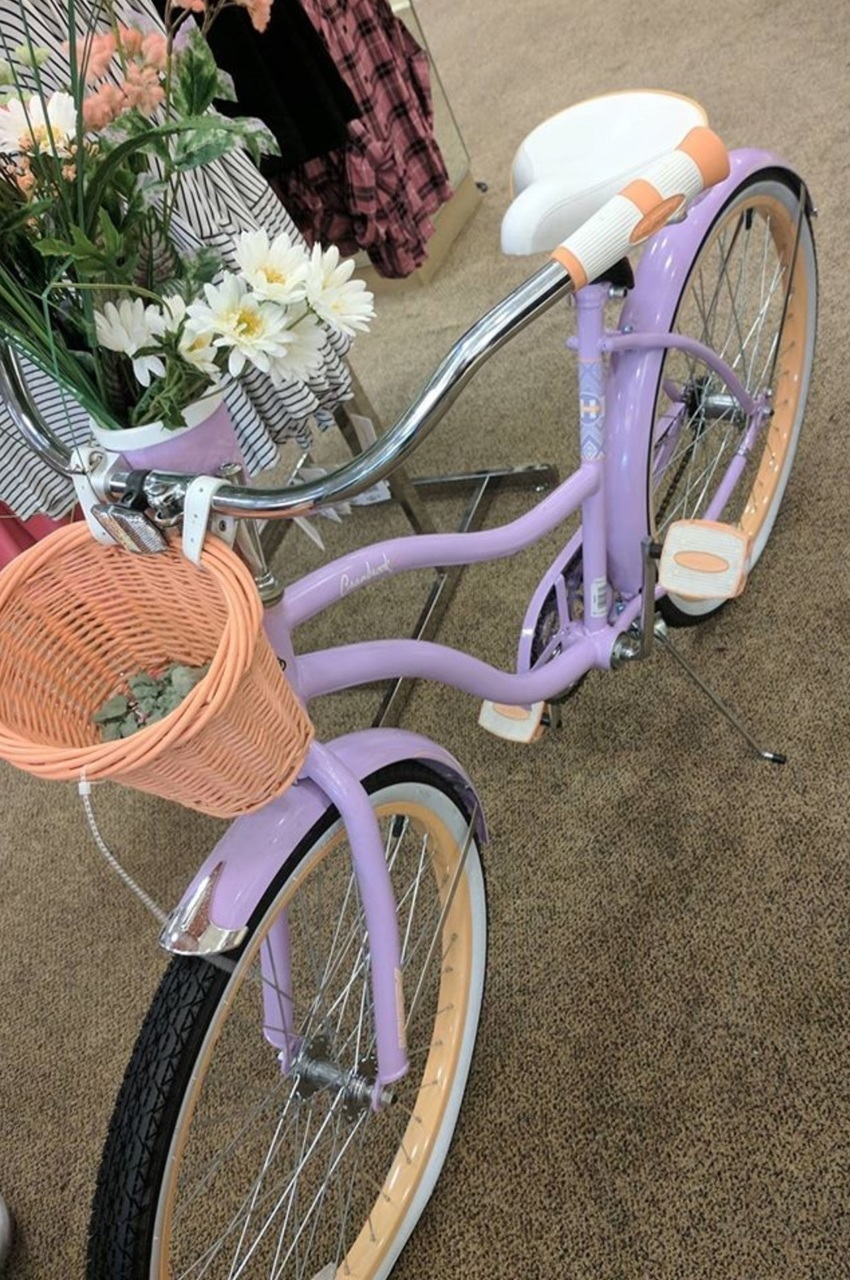 aesthetic, bicycle, and carefree image