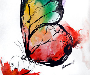 art, mariposa, and butterfly image