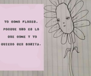 broken, flower, and frases image