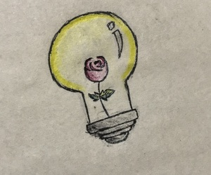 light and b2uty image