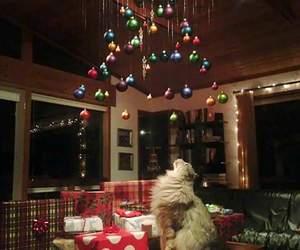 balls, cat, and christmas image