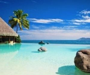 amazing, palm, and sea image