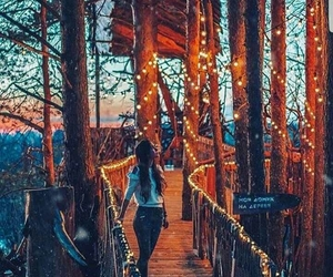 bridge, dreamy, and lights image