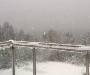 balcony, christmas, and cold image