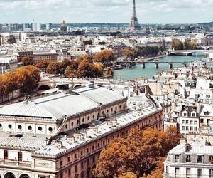 architecture, city, and paris image