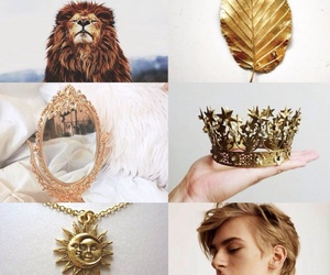 aesthetic, king, and lion image