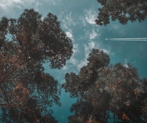 plane, sky, and trees image