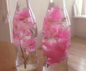 coca cola, flower, and flor image
