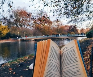book, autumn, and reader image
