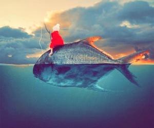 fish and fishing image