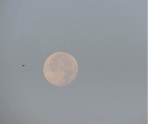 day, moon, and nature image