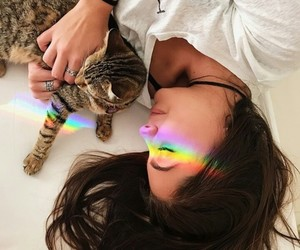 girls, cats, and hair image