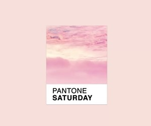aesthetic, colour, and pantone image