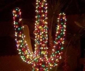 christmas, cactus, and lights image