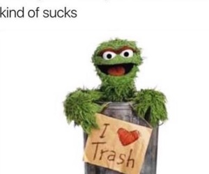 funny, sesame street, and trash image
