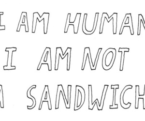 sandwich, human, and quote image