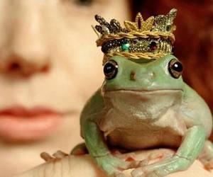 frog, princess, and prince image