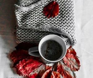 cafe, coffee, and fall image