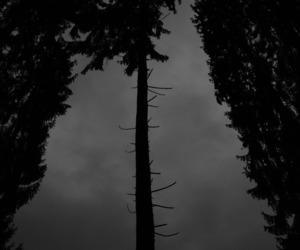 black, dark, and night image